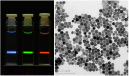 Left: Cuvettes with luminescent nanoparticles, right: REM micrograph of upconversion nanoparticles.